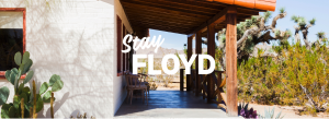 Floyd Furniture